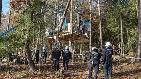 Nachrichten aus Deutschland – Dannenröder Forst