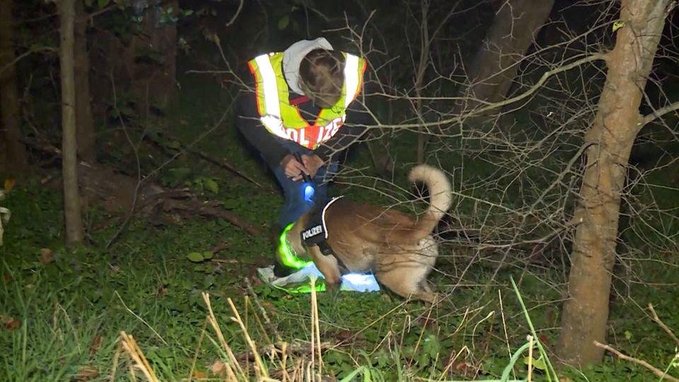 Ein Polizist mit einem Spürhund auf der Suche nach Leichenteilen in einem Berliner Waldstück