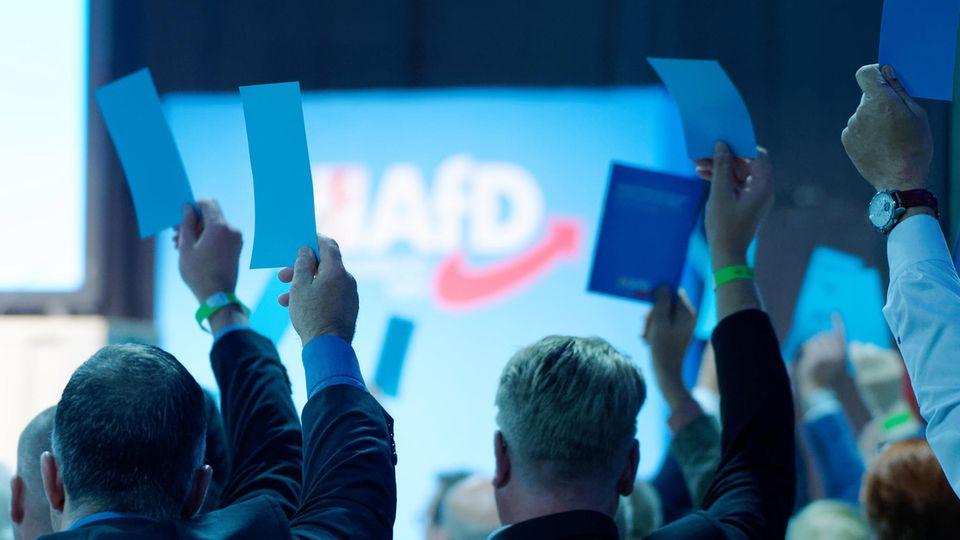 Delegierte der AfD stimmen mit Zetteln in der Hand ab