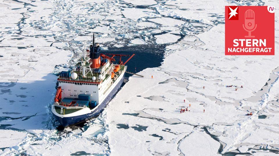"""Podcast """"STERN nachgefragt"""": So sah der Alltag auf dem Forschungsschiff """"Polarstern"""" aus"""