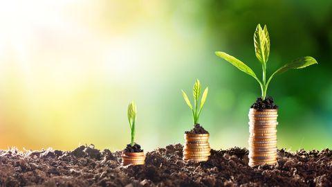 Nachhaltig Geld anlegen