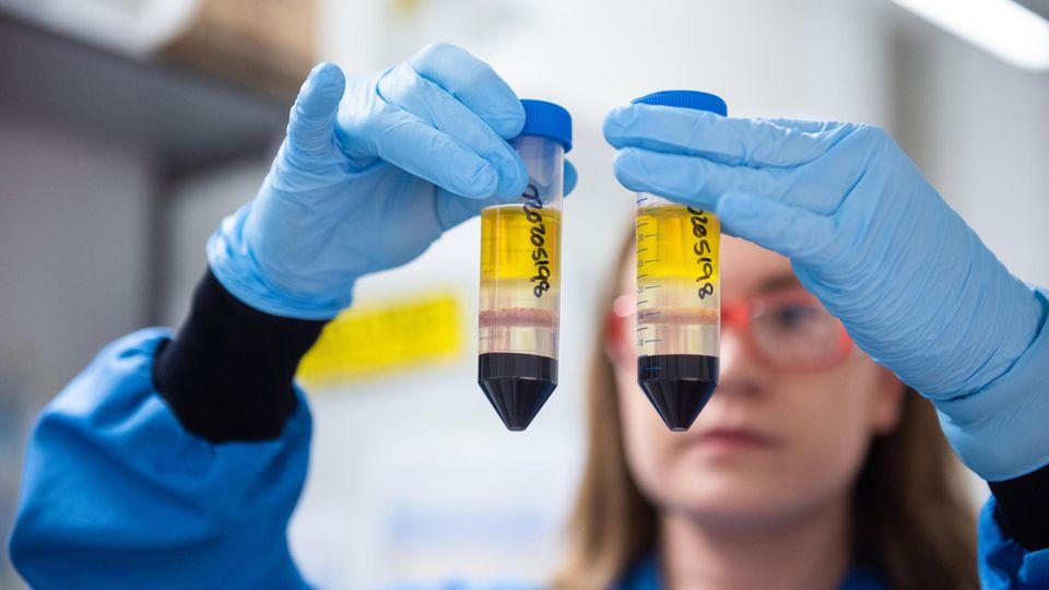 AstraZeneca lässt eigenen Impfstoff nochmals überprüfen