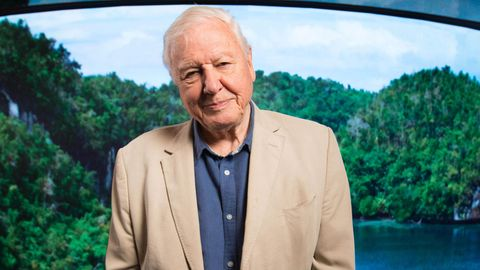 Naturforscher Sir David Attenborough