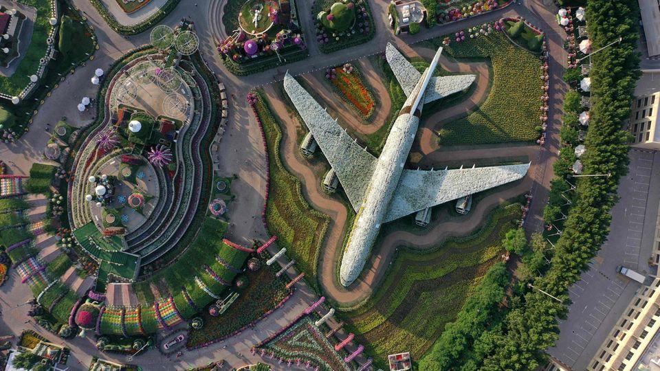 Bild 1 von 12der Fotostrecke zum Klicken: Blick aus der Drohnen-Perspektive auf den Blickfang im Dubai Miracle Garden: der von blühenden Blumen überwucherte Airbus A380.