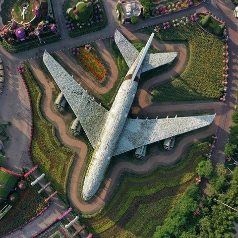 Dubai Miracle Garden: Dieser Hippie-Airbus A380 landet im Guinness-Buch