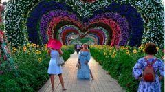 Die florale Schau wird auf einer Fläche von 72.000 Quadratmetern in der Nähe des Dubai Autodrome im Osten der Metropole veranstaltet.