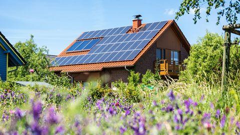 Einmal Immobilie und zurück: Ein Haus im Grünen war unser Traum. Als wir es hatten, bekamen wir Heimweh – nach der Stadt