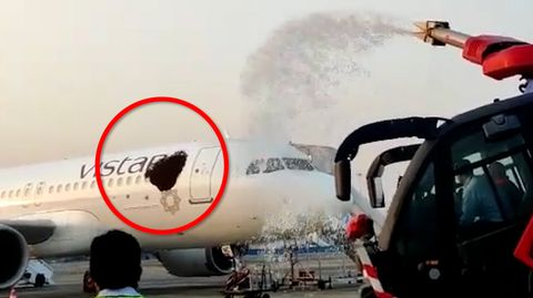 Bienen-Attacke auf Airbus in Indien