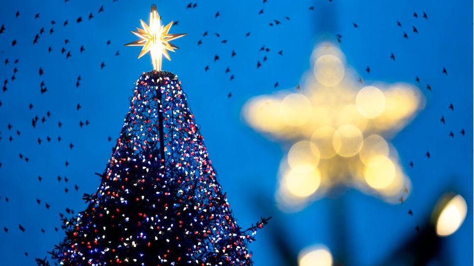 Bleibt es bei den aktuell hohen Infektionszahlen, sind Corona- Lockerungen zu Weihnachten und Silvester eher unwahrscheinlich