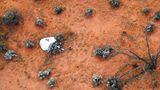 Blick aus dem Suchhubschrauber auf die Kapsel, die an einem Fallschirm herabschwebte