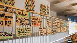 Schüler erarbeiten Verhaltensregeln und engagieren sich für Menschenrechte und Umweltschutz