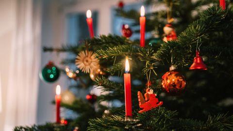Ein Weihnachtsbaum als Symbolfoto