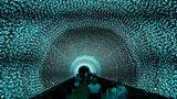 Singapur: Adventszeit in Äquatornähe  Besucherlaufen in den Gardens by the Bay durch einen nur in der Weihnachtszeit installierten LED-Tunnel.