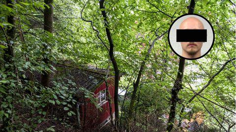 Hütte im Wald versteckt