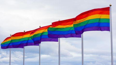 Mehrere Regenbogenfahnen wehen im Wind.