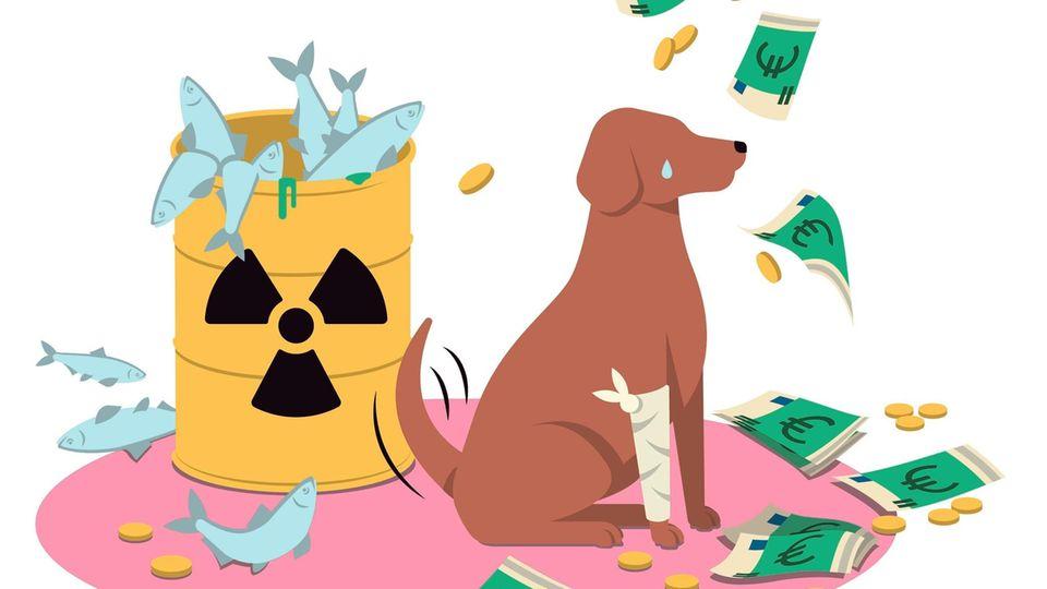 Illustration Hund