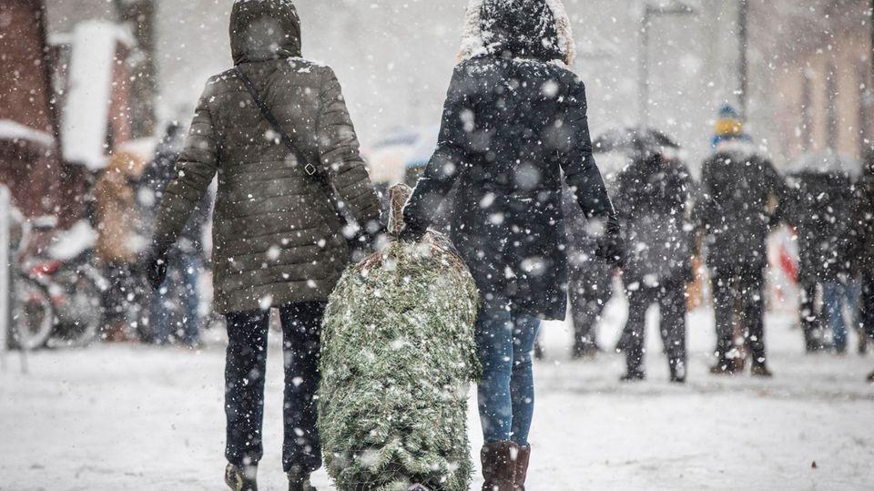 Zwei Frauen tragen bei starkem Schneefall einen frisch erworbenen Weihnachtsbaum (Archivbild)