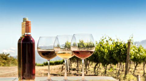 Weingläser vor Weinreben