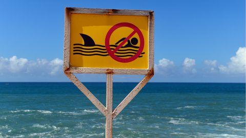 Ein Schild an der Küste verbietetin Mogadischu (Somalia) das Schwimmen im Meer