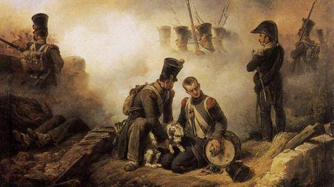 Der Hund des Regiments verwundet - zeitgenössisches Gemälde vonEmile Jean Horace Vernet