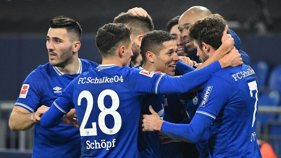 Pure Erleichterung: Die Schalker Profis jubeln über den Sieg gegen Hoffenheim