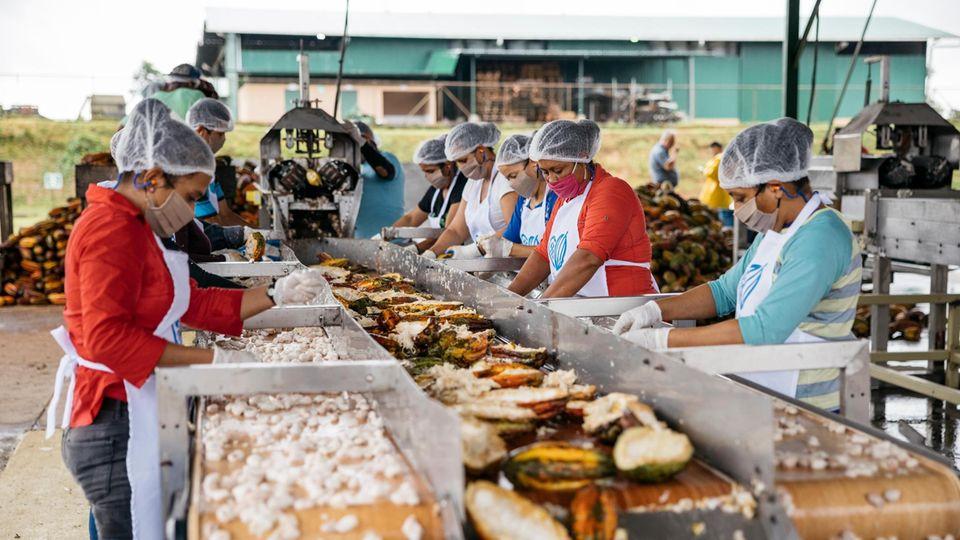Arbeiterinnen am Kakaobohnen-Fließband
