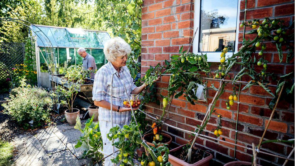 Abgesichert in den Ruhestand: Wenn schon sparen, dann für eine Immobilie – wie ein Eigenheim die Rente aufbessert